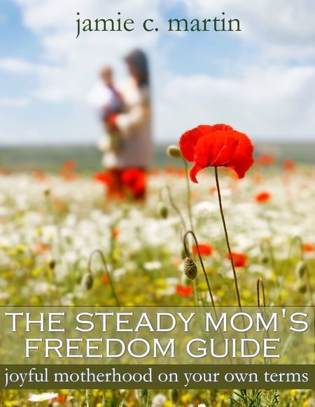 The Steady Mom's Freedom Guide
