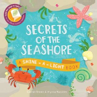 Secrets of the Seashore by Carron Brown, illustrated by Alyssa Nassner